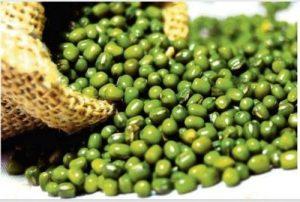green-gram-mung-dal-mung-beans