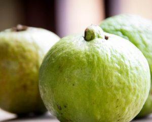 Guava 1.0