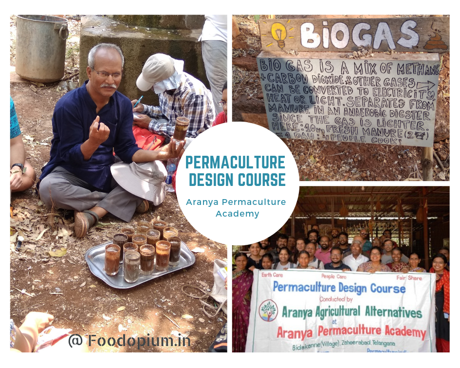 Aranya – Permaculture Design Course (PDC)