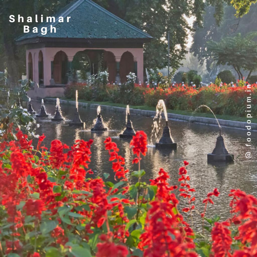 shalimar-bagh
