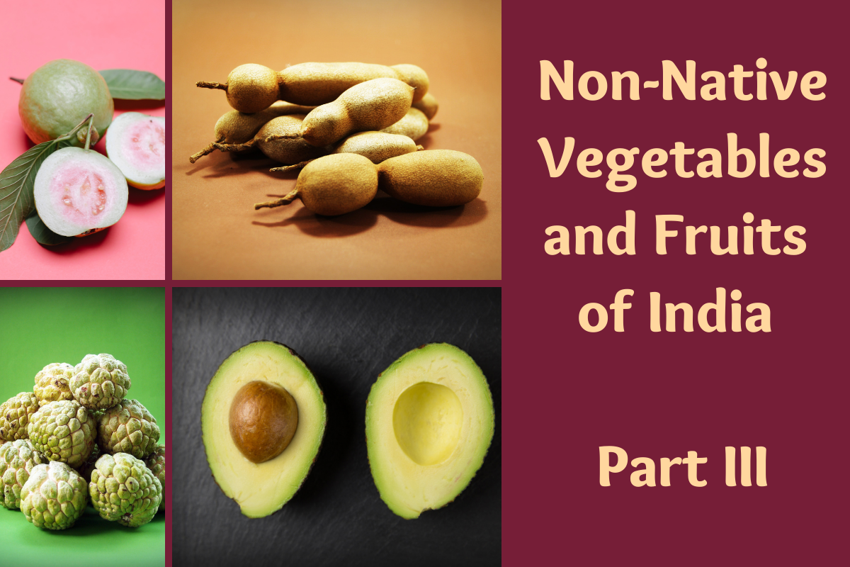 Non-Native Vegetables and Fruits of India Part III